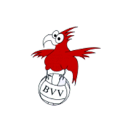 Brandenburgischer Volleyballverband (BVV)